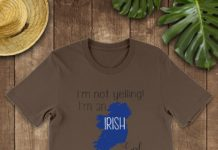 I'm not yelling I'm an Irish girl we just talk loud shirt