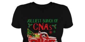 Jolliest Bunch of CNAs This Side of The Nuthouse shirt