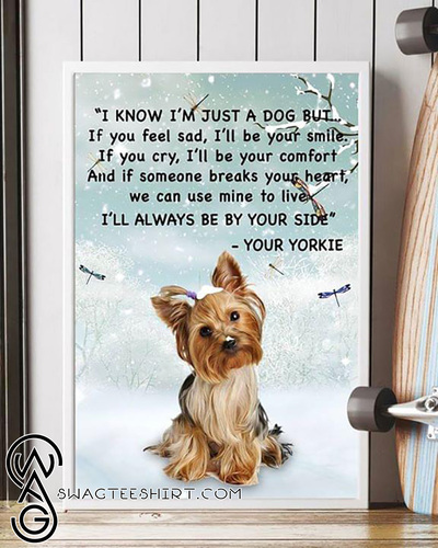 Yorkshire terrier I know I'm just a dog but if you feel sad I'll be your smile poster