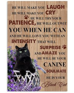 Black-Cat-He-will-make-you-laugh-He-will-make-you-cry-he-will-try-your-patience-poster