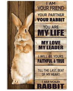 I-Am-Your-Friend-Your-Partner-Your-Rabbit-Poster