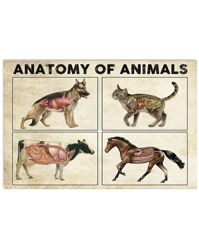 Anatomy-Of-Animals-Poster