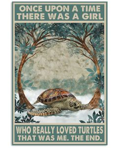 Once-Upon-A-Time-There-Was-A-Girl-Who-Really-Loved-Turtles-Poster